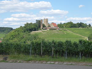 Sommerspaziergang in Neipperg