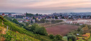 Panorama: Morgenstimmung in Lauffen am Neckar