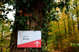 Limes Blicke als Highlight in der Region