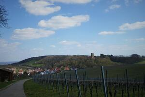 Osterspaziergang in Neipperg