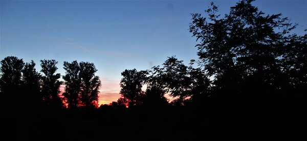 herbst, abendrot